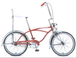こんなおシャレな自転車欲しいぞー